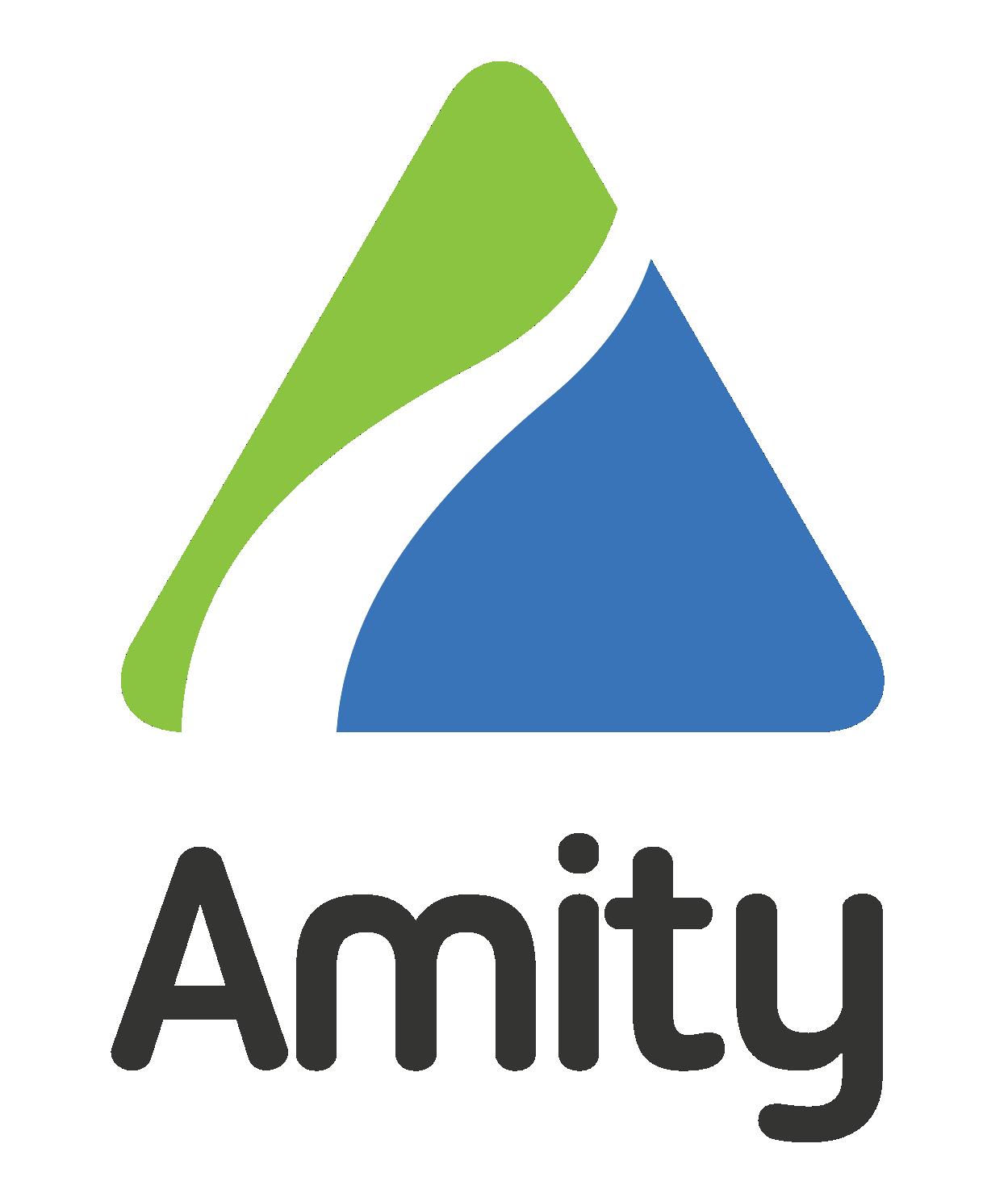 Amity Technographics