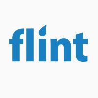 Flint Technographics