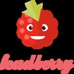 Leadberry Technographics