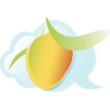 MangoApps Technographics