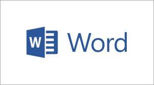 Microsoft Word Technographics