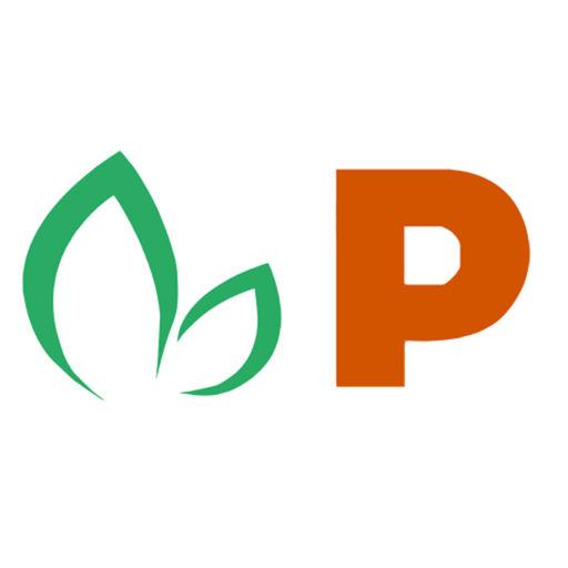 Pappaya Technographics