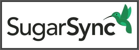 SugarSync Technographics