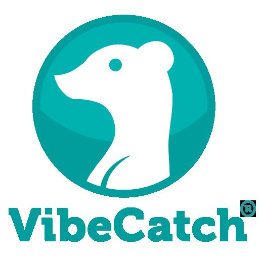 VibeCatch Technographics