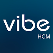 VibeHCM Technographics