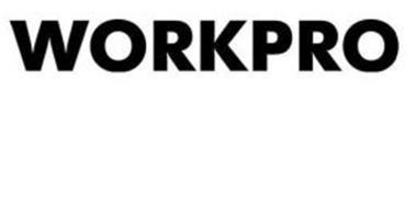 WorkPro Technographics