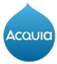 Acquia Technographics