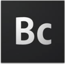 Adobe Business Catalyst Technographics