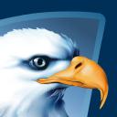 American Eagle Technographics