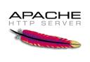 Apache Web Server Technographics