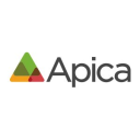 Apica Synthetic