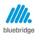 Bluebridge Technographics