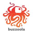 Buzzoola Technographics