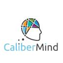 CaliberMind Technographics