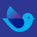 Data Pigeon Technographics