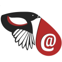 Email Magpie Technographics