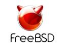 FreeBSD Technographics