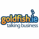 Goldfish.ie Technographics