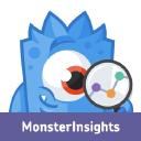 MonsterInsights Technographics
