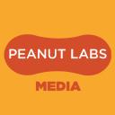PeanutLabs Technographics