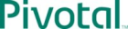 Pivotal Web Services Technographics