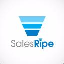 SalesRipe Technographics