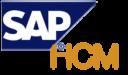 SAP HCM Technographics