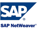 SAP NetWeaver Technographics