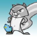SquirrelCart Technographics