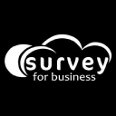 Survey For Business Technographics