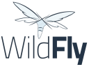 Wildfly Technographics