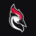 Woodpecker Technographics