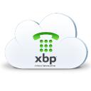 XBP Technographics