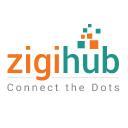 zigihub Technographics